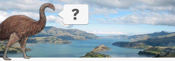 Moa Neuseeland Frage