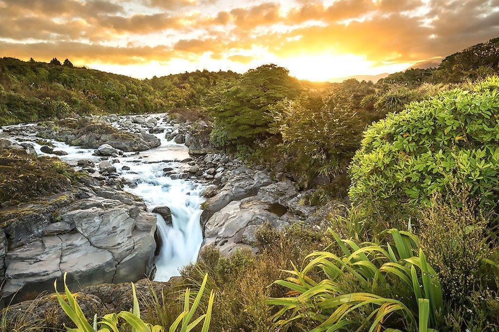 Neuseeland Flug - Work and Travel Neuseeland